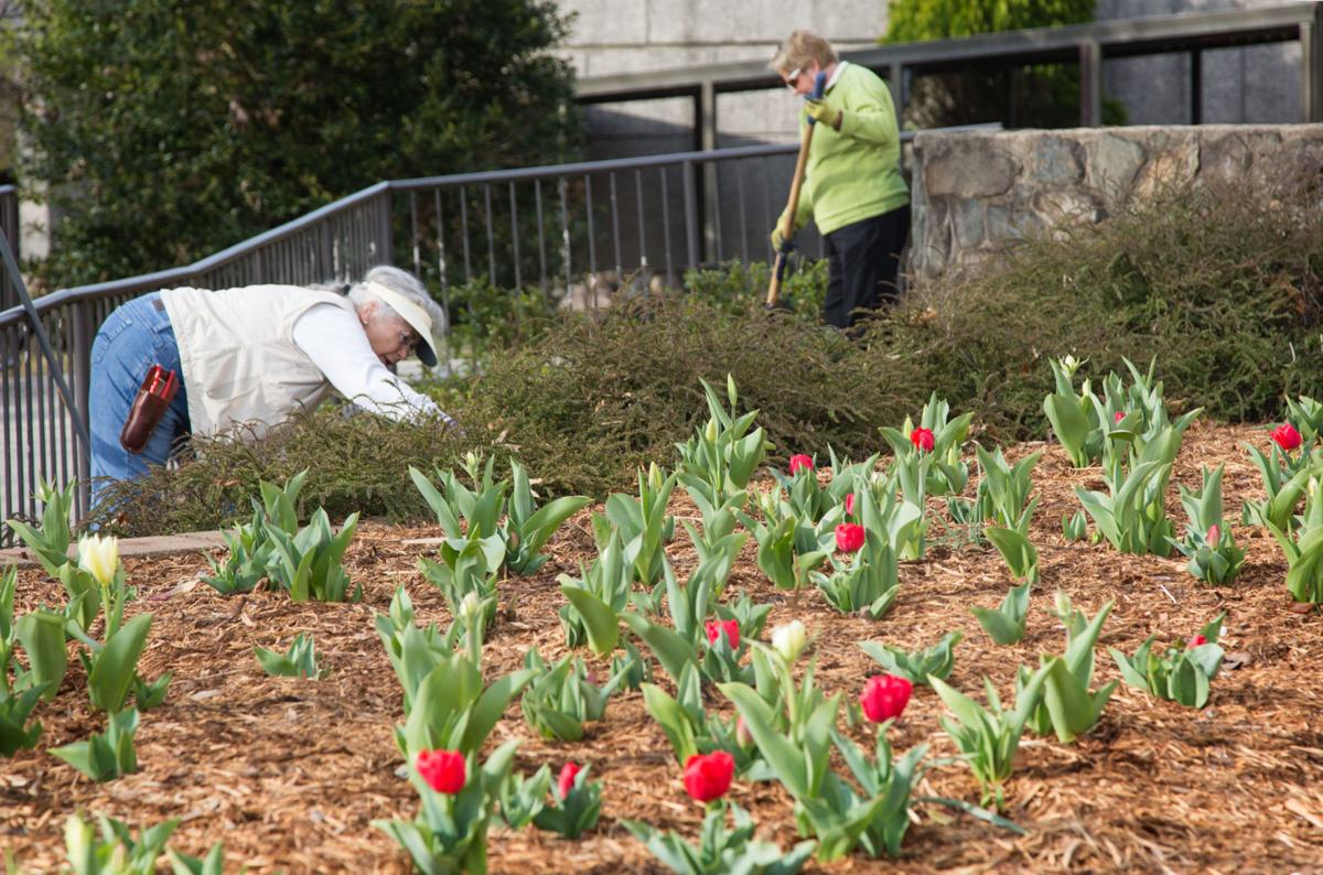 Amy Dixon: Crew has big job dressing up the grounds for MerleFest ...