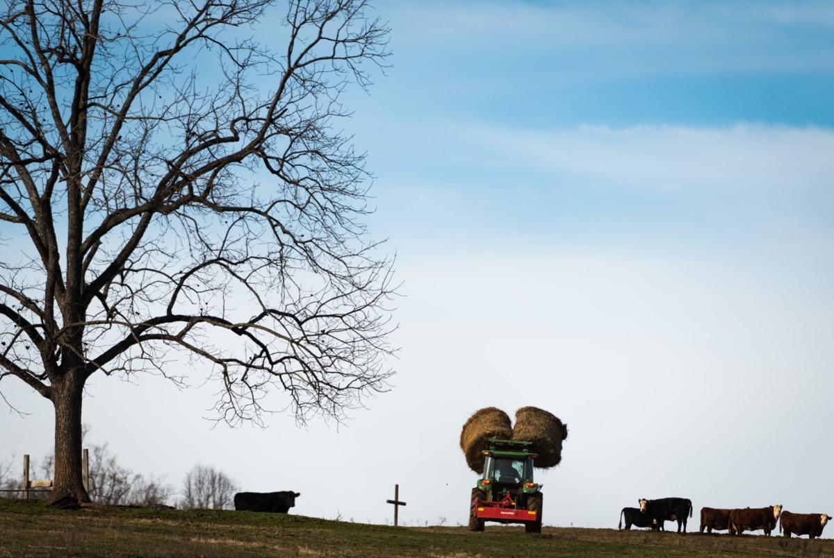 PLC Preserves Crossnore Farmland