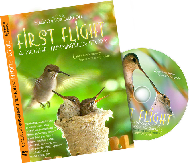 Gift Ideas for bird-watchers | Archives