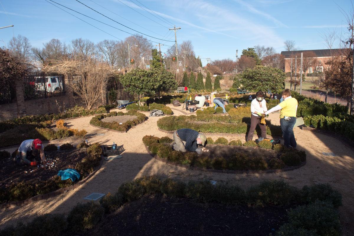 Dixon: Ciener garden doesn\'t sleep in winter | Amy Dixon: Gardening ...