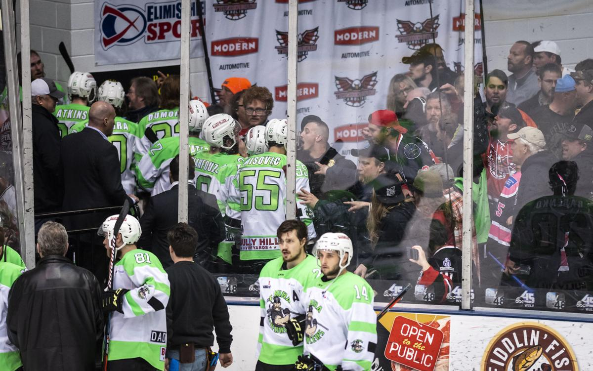 Brawl Between Fans Hockey Players After Carolina Thunderbirds Game