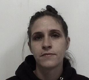 Davidson County woman arrested, charged with possessing meth | Crime