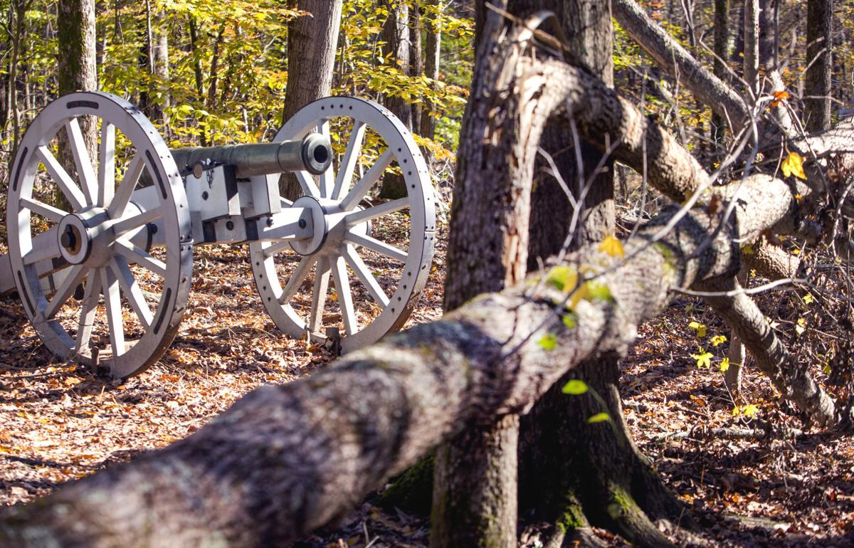Tree cleanup at Guilford Courthouse Military Park