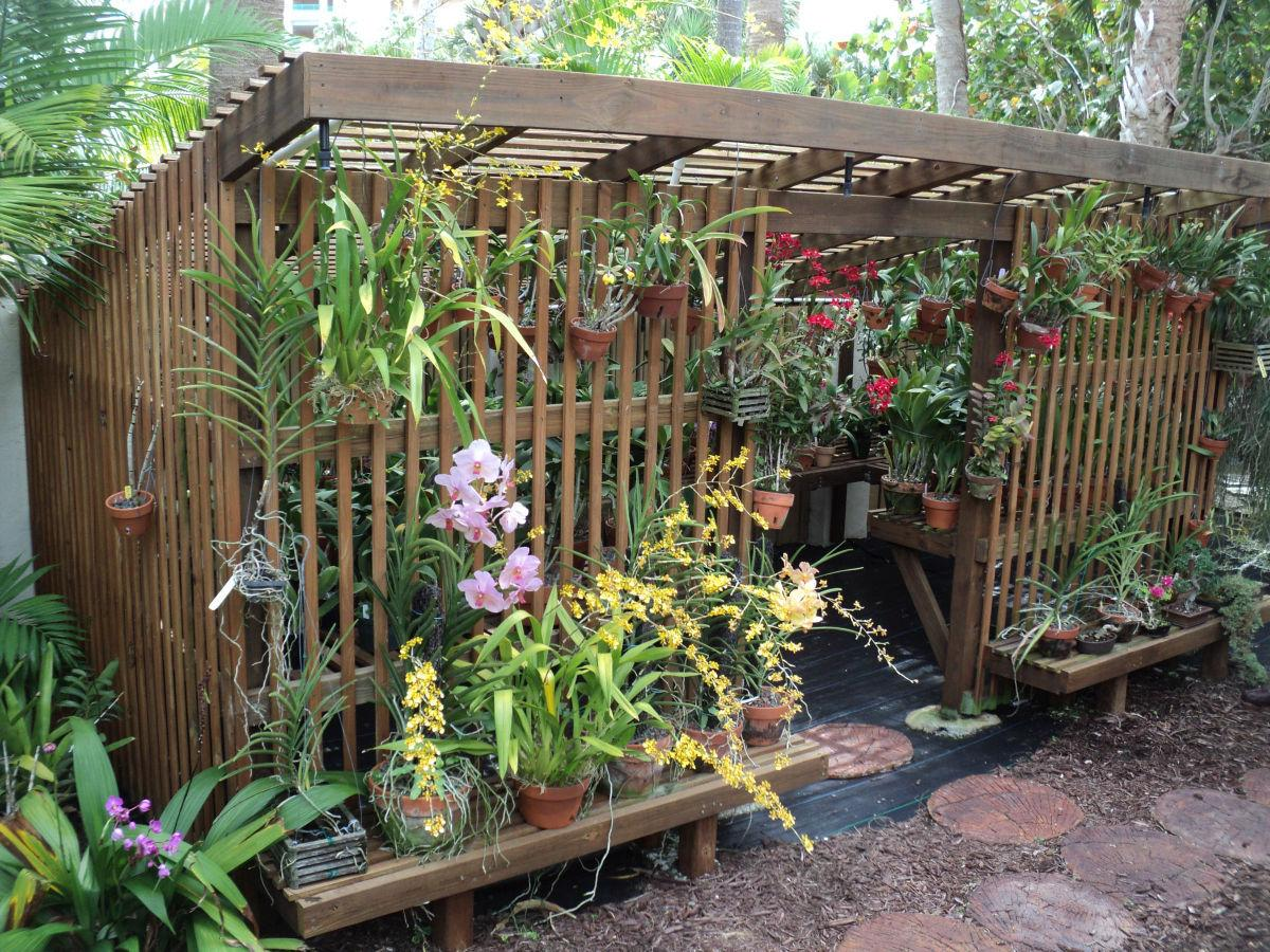 a lath house will shade orchids from summer sun garden. Black Bedroom Furniture Sets. Home Design Ideas