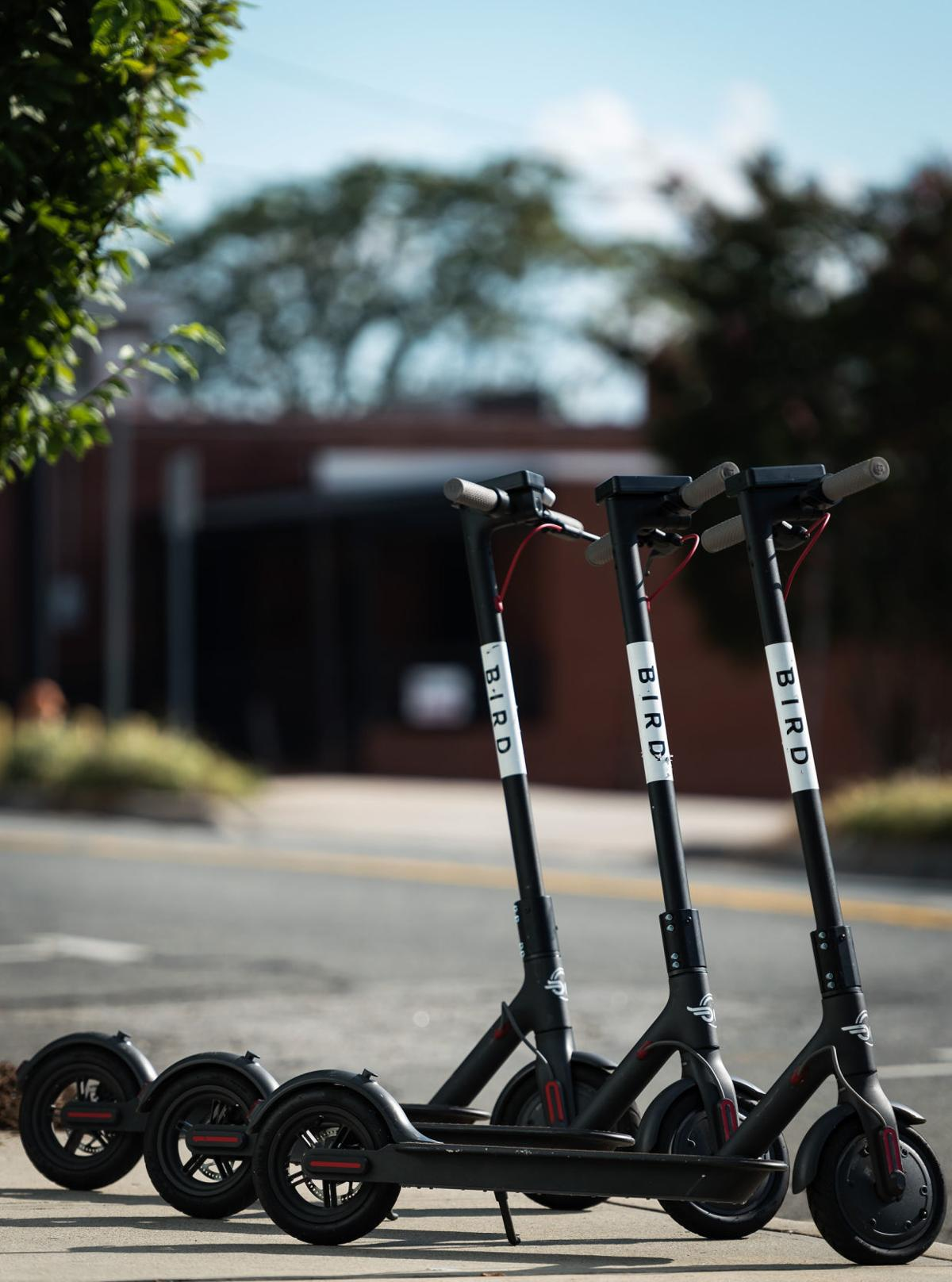 Bird electric scooters have landed in a big way | Local News