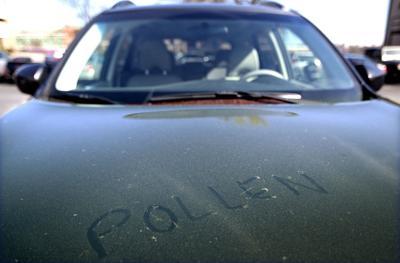 Heavy pollen reported in Greensboro