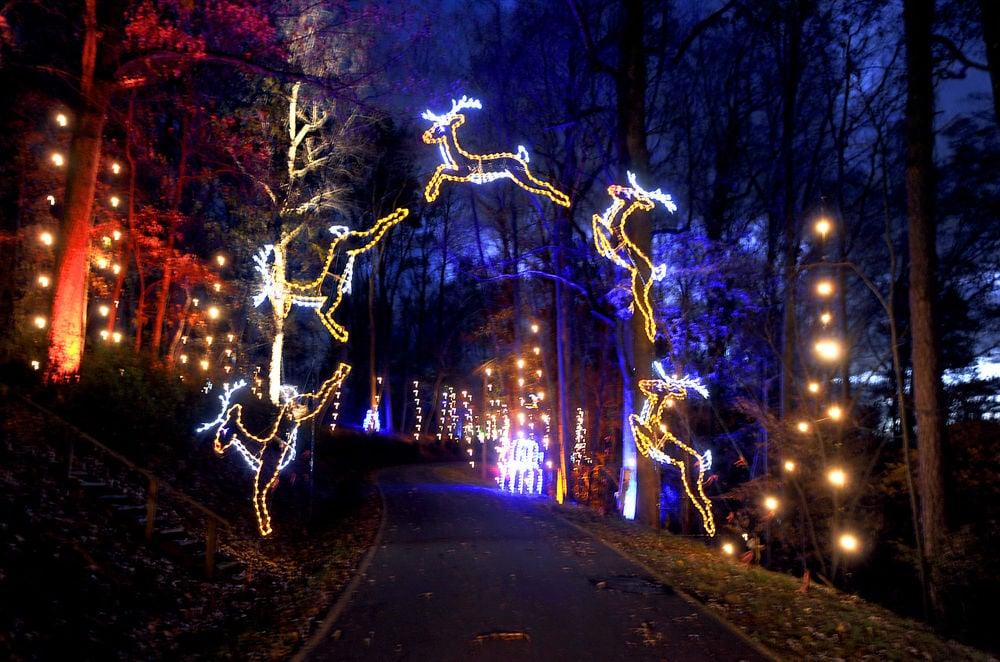 pick 6 festival of lights winston salem monthly journalnowcom