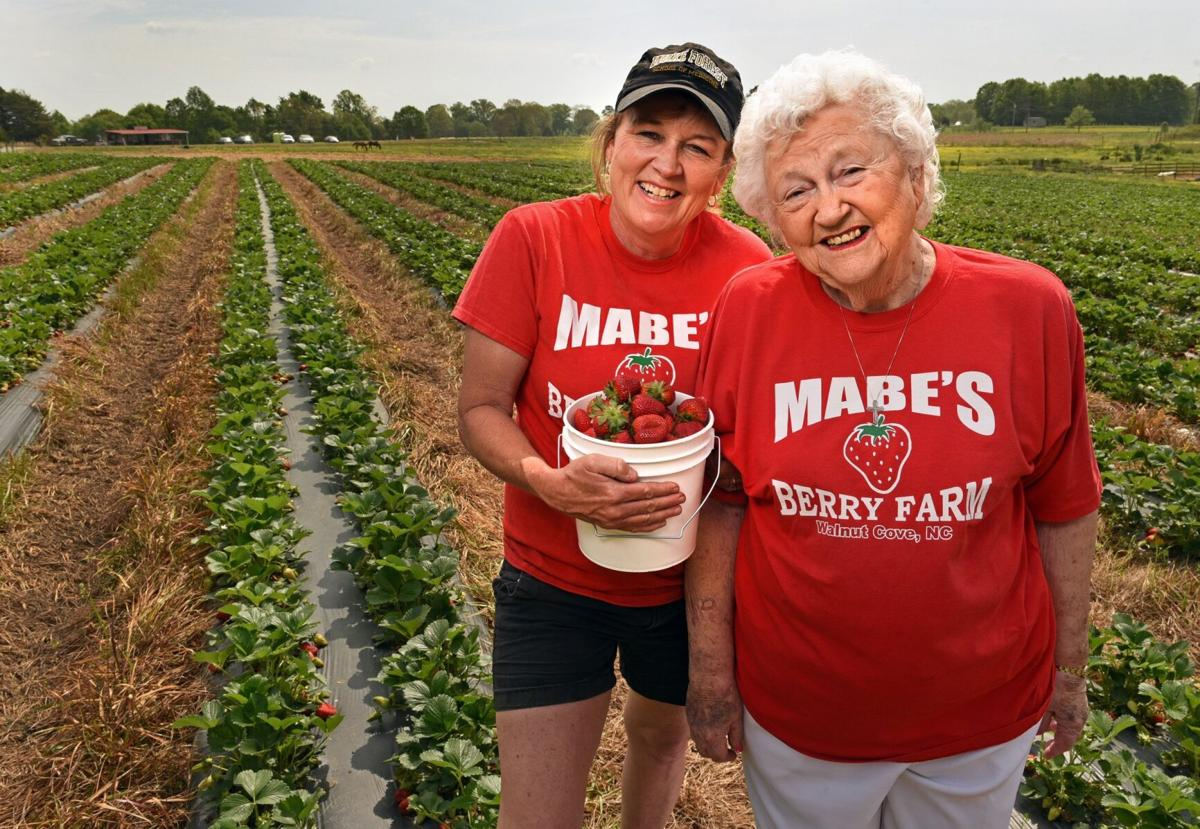 Mabe's Berry Farm