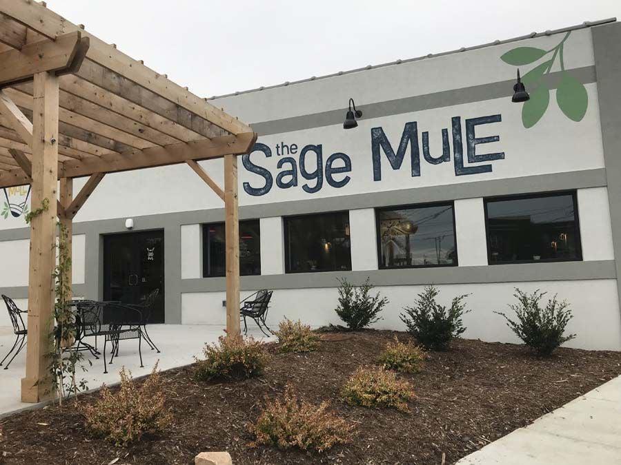 Sage Mule