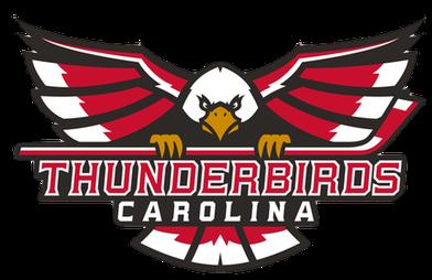 thunderbirds logo web 030821