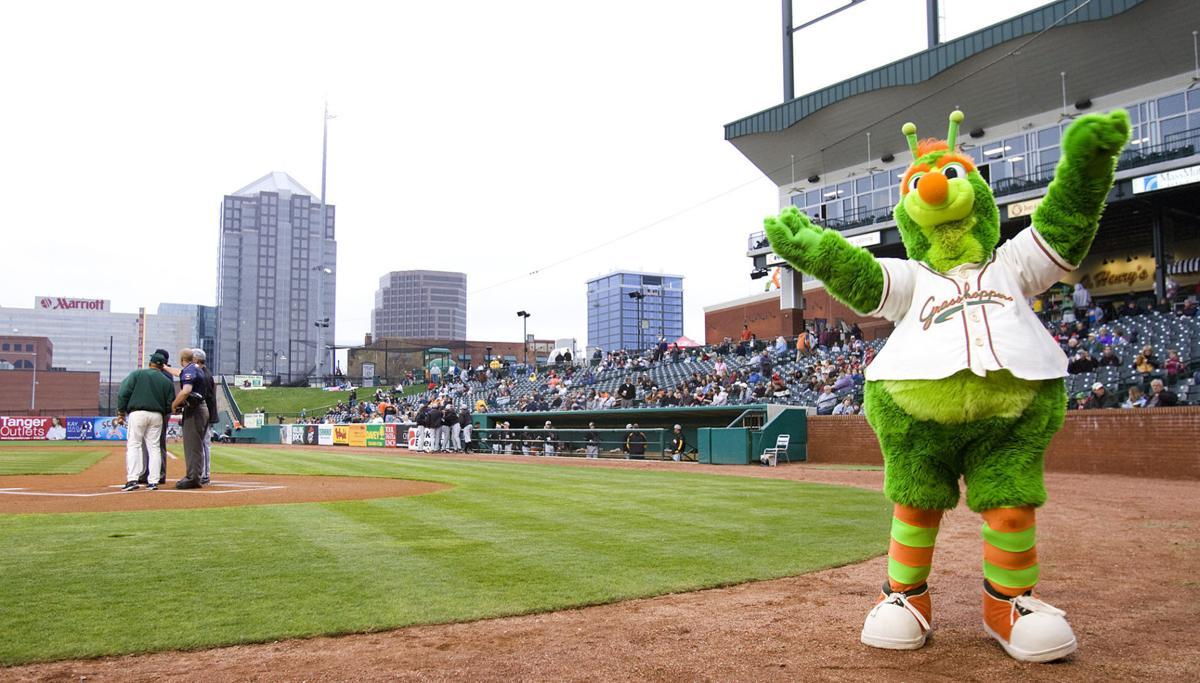 Pro sports - Greensboro Grasshoppers (copy)