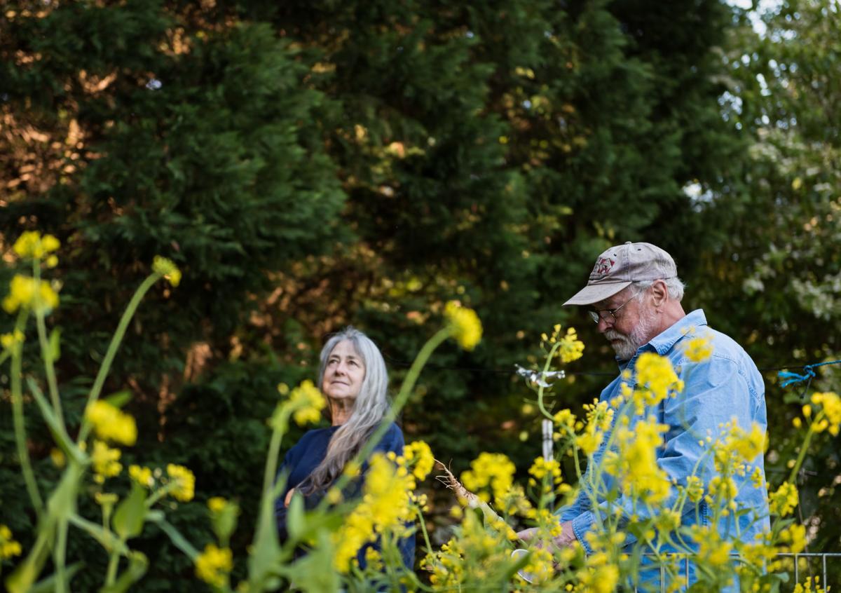 Jim and Jan Hullihan Urban Garden