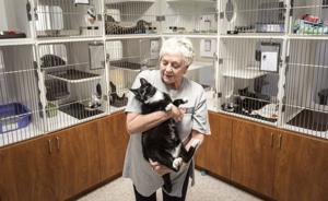 Questions arise as vote nears on county/humane society contract