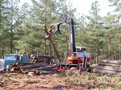 Record lumber prices