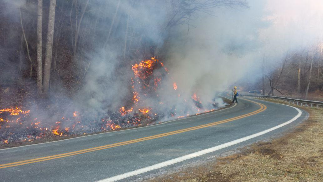 forest fire  logging accident occur in champion wednesday afternoon