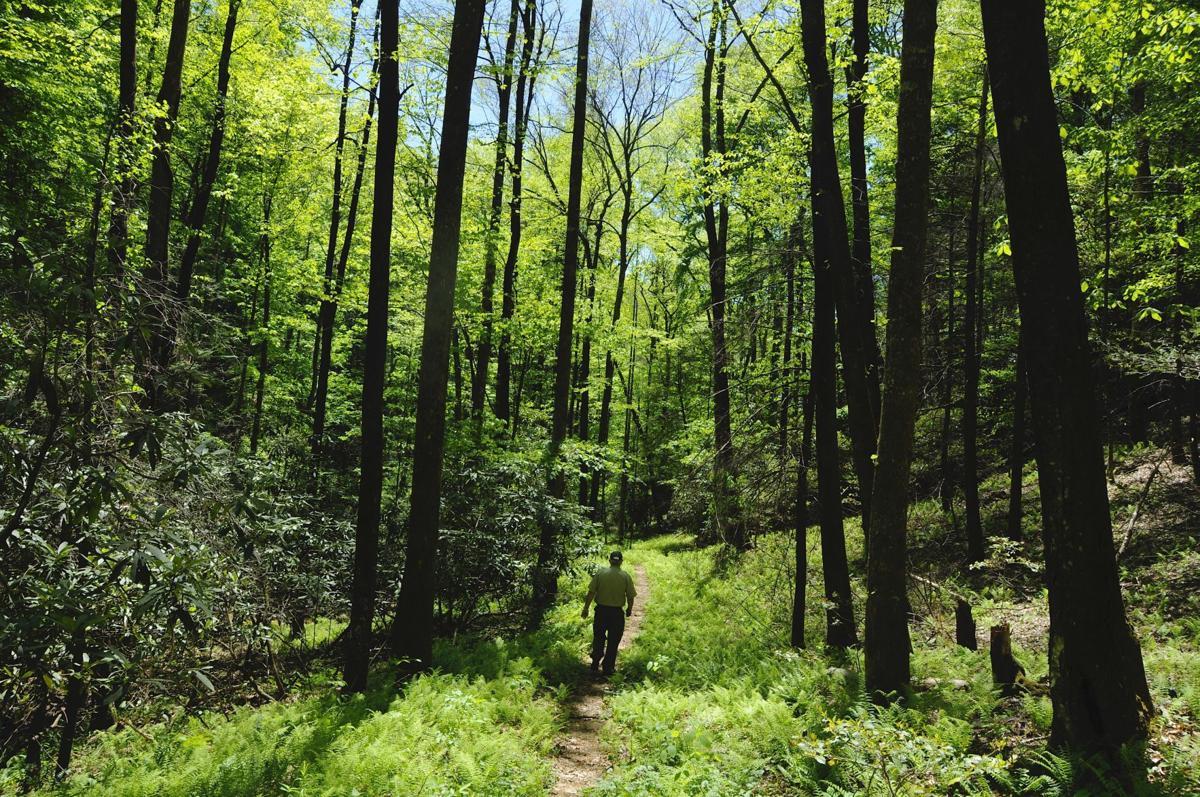 On Amadahy Trail