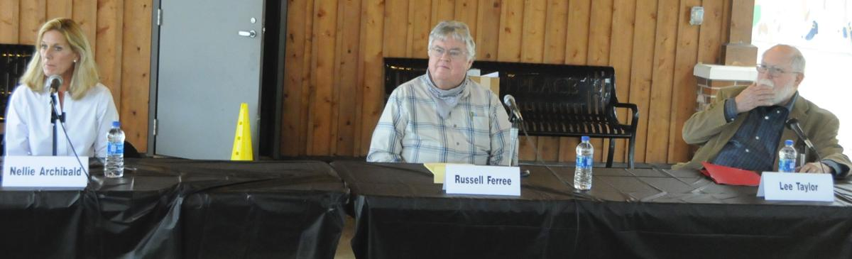 Wilkesboro Town Council candidates
