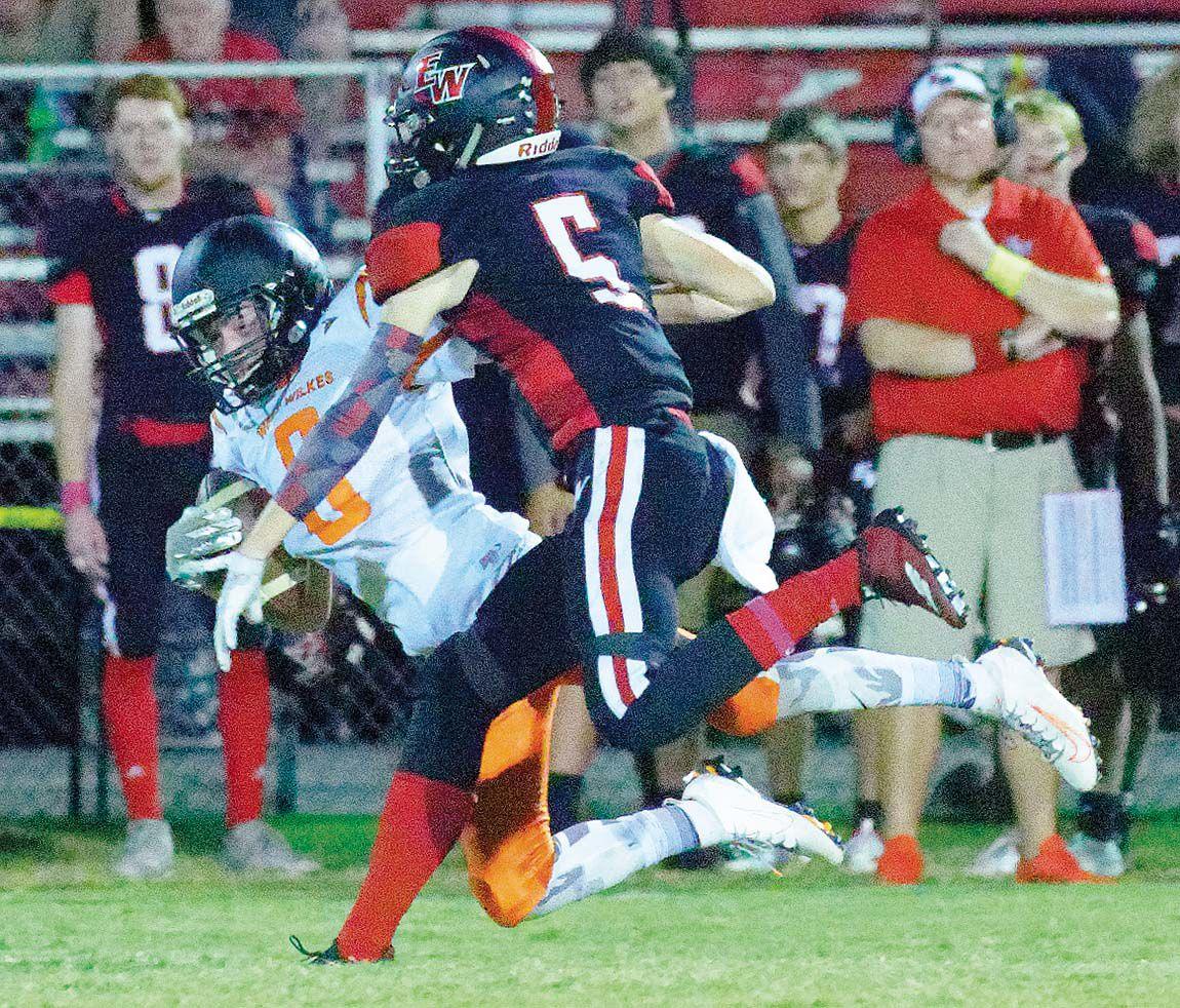 Shane Pellicano catch 2 color