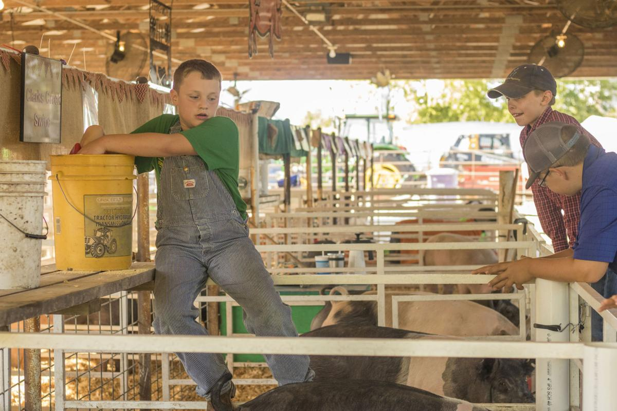 Geary County Free Fair fares well due to fair weather