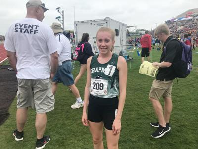 Chapman's Briggs wins two gold medals at Saturday's state track meet