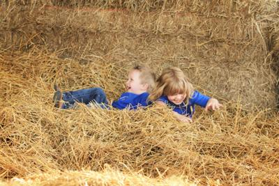 Hildebrand holds yearly harvest festival