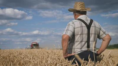 Gift of Grain Opportunity to support Aging Well