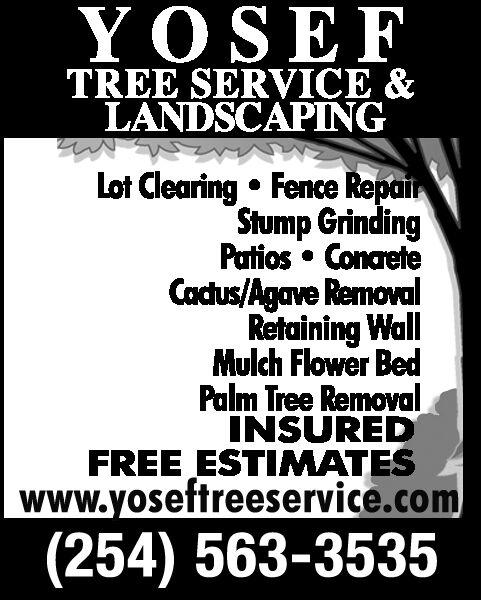Yosef Tree Services