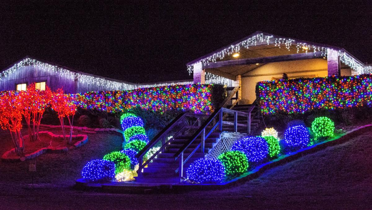 Nature in Lights at BLORA now open | Military | kdhnews.com