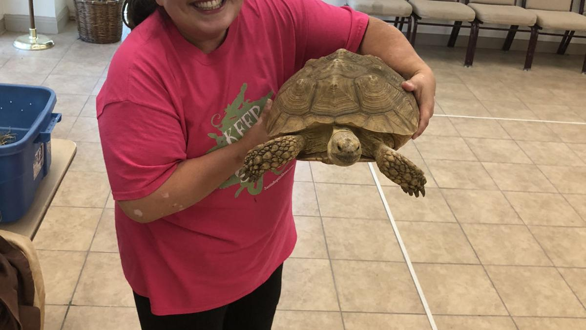 Cove library hosts Austin Reptile Show