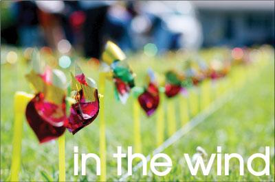 Pinwheels honor victims of violent crime