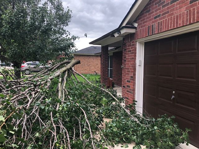 Overnight storm brings power outages, heavy rainfall | Local