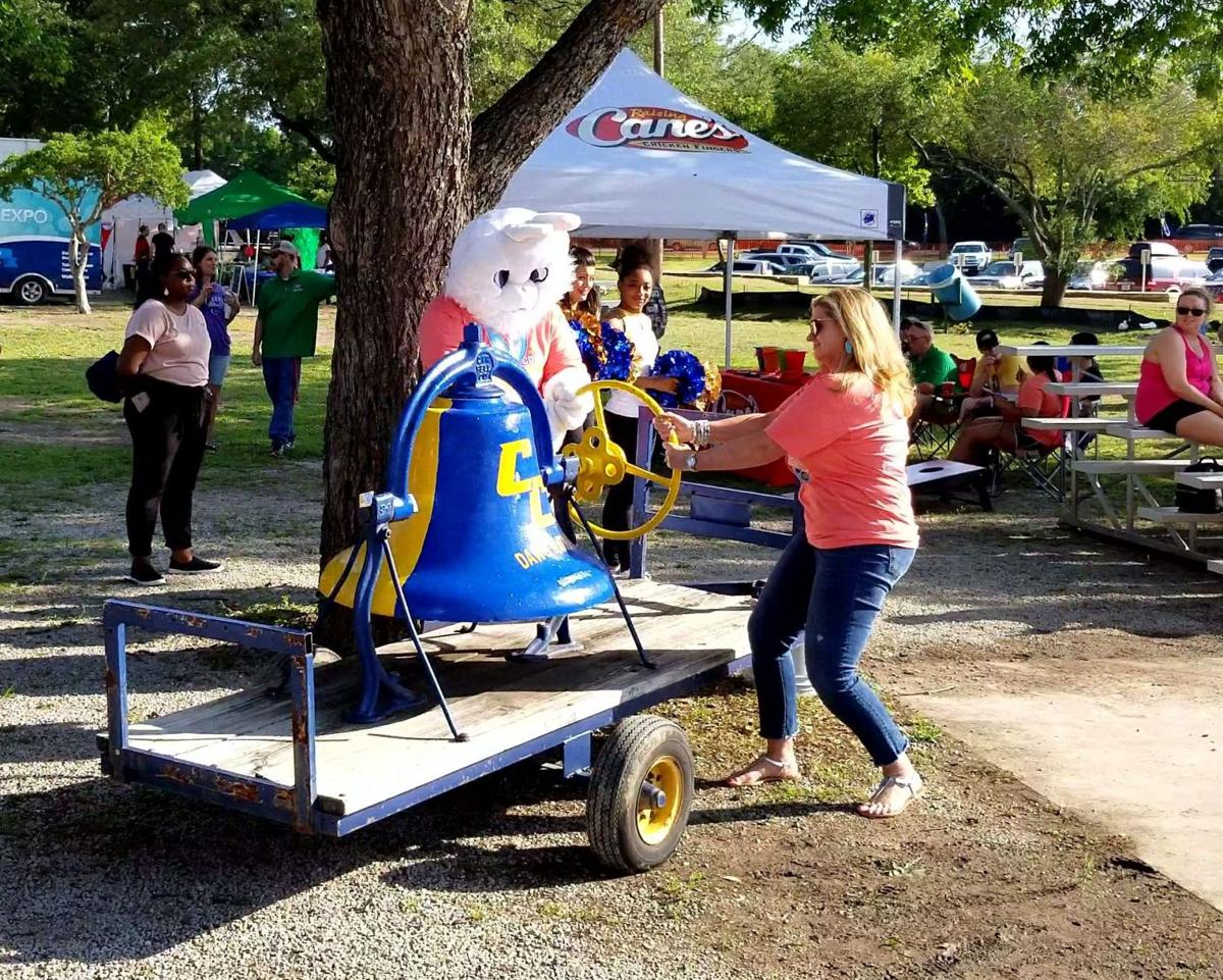 Rabbit Fest 1