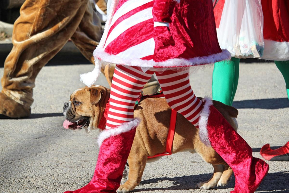 City of Florence launches 1st Christmas Parade and Extravaganza