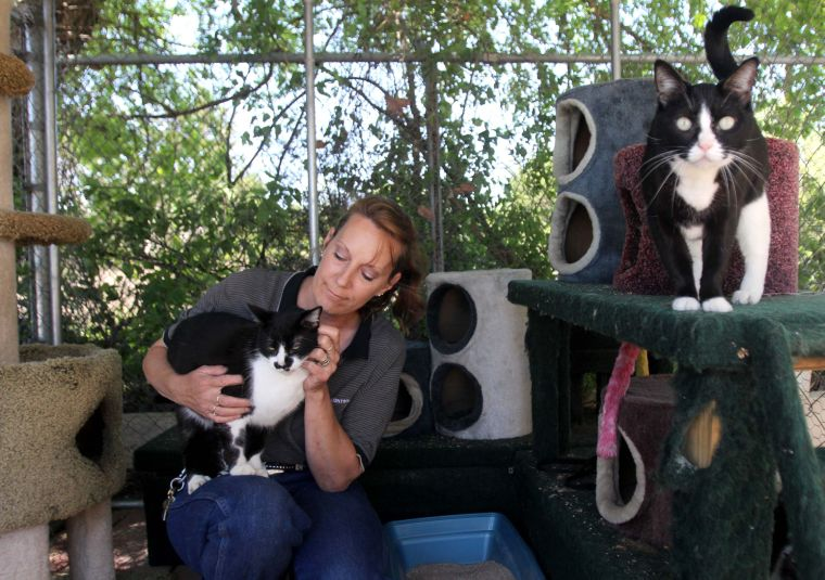 Copperas Cove Animal Control