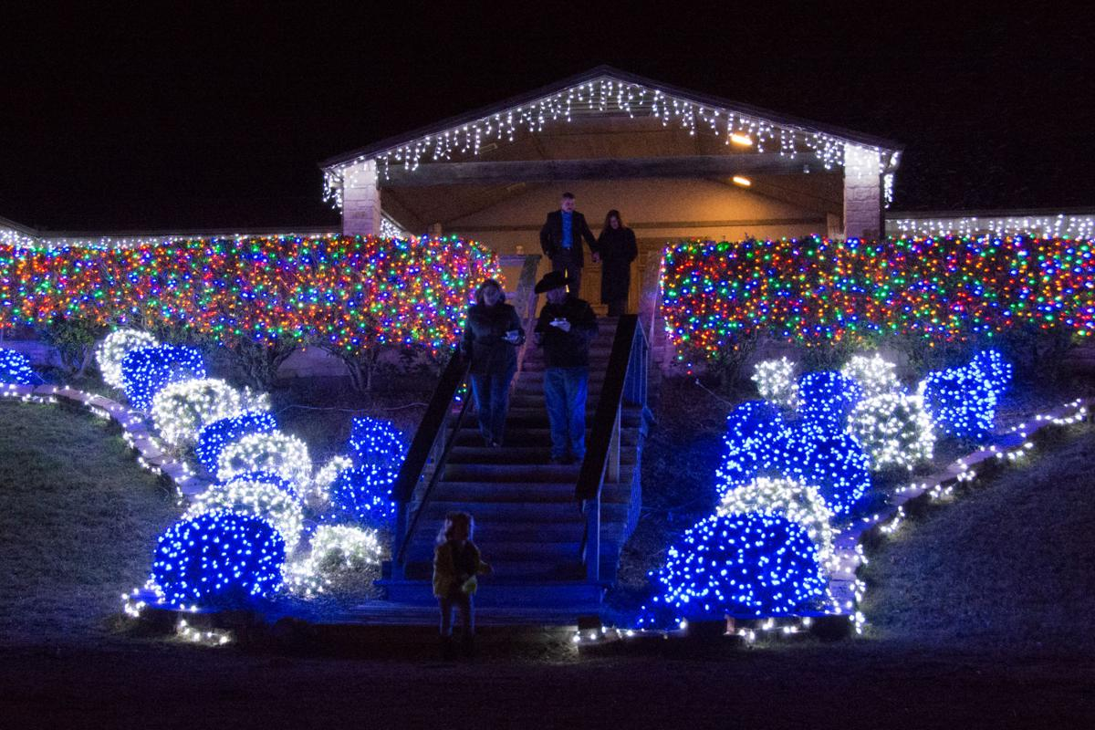 How To Get To Blora Nature In Lights