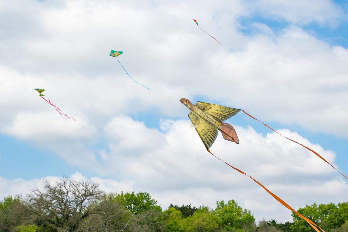 5th Annual Kites for Kids