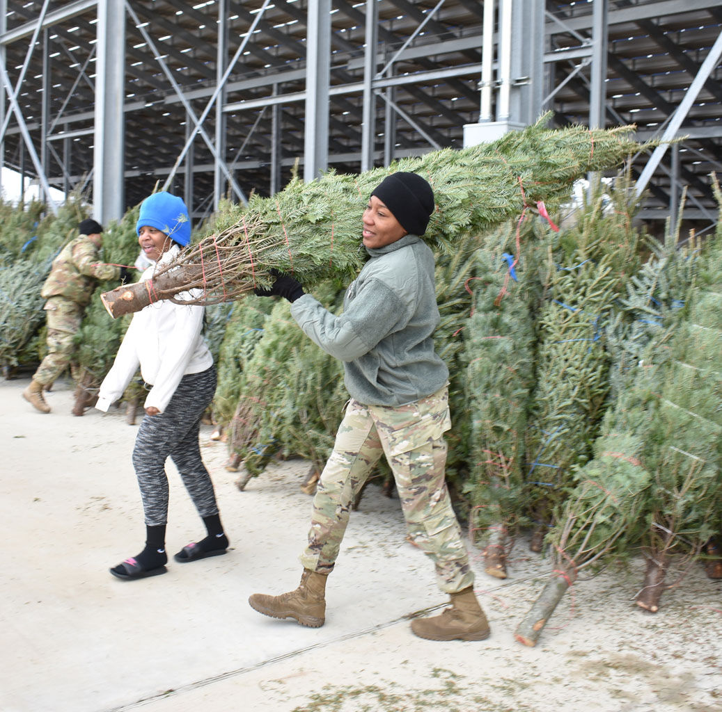 Trees for Troops 5