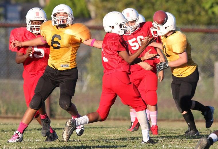 Future Stars Football