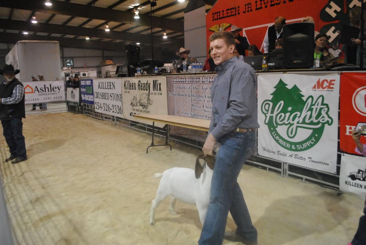 RGC Meat Goat