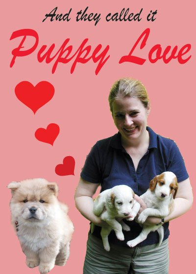 And they call it ... Puppy love