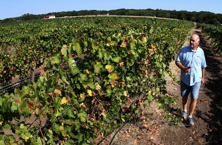 Pillar Bluff Winery 05.jpg