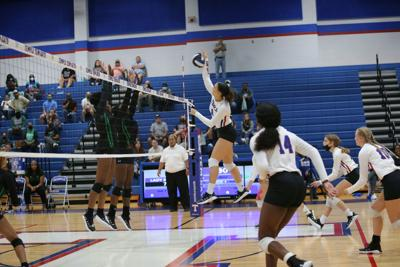 Ellison at Temple volleyball