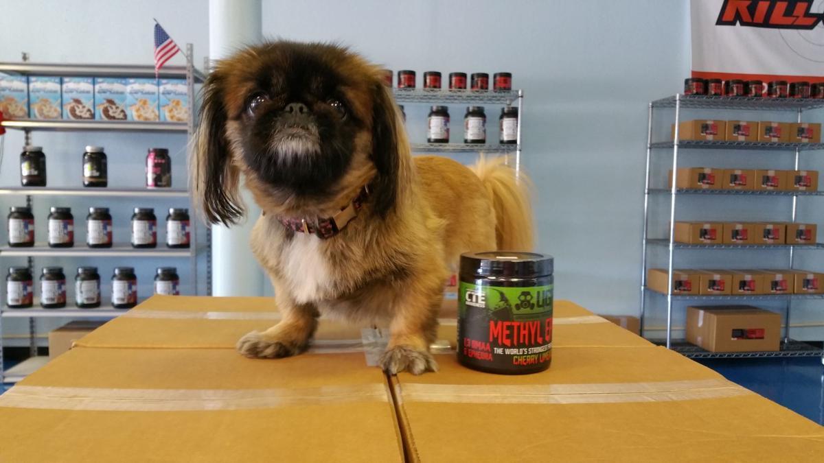 TKO Nutrition & Smoothies Mascot, Bonnie!
