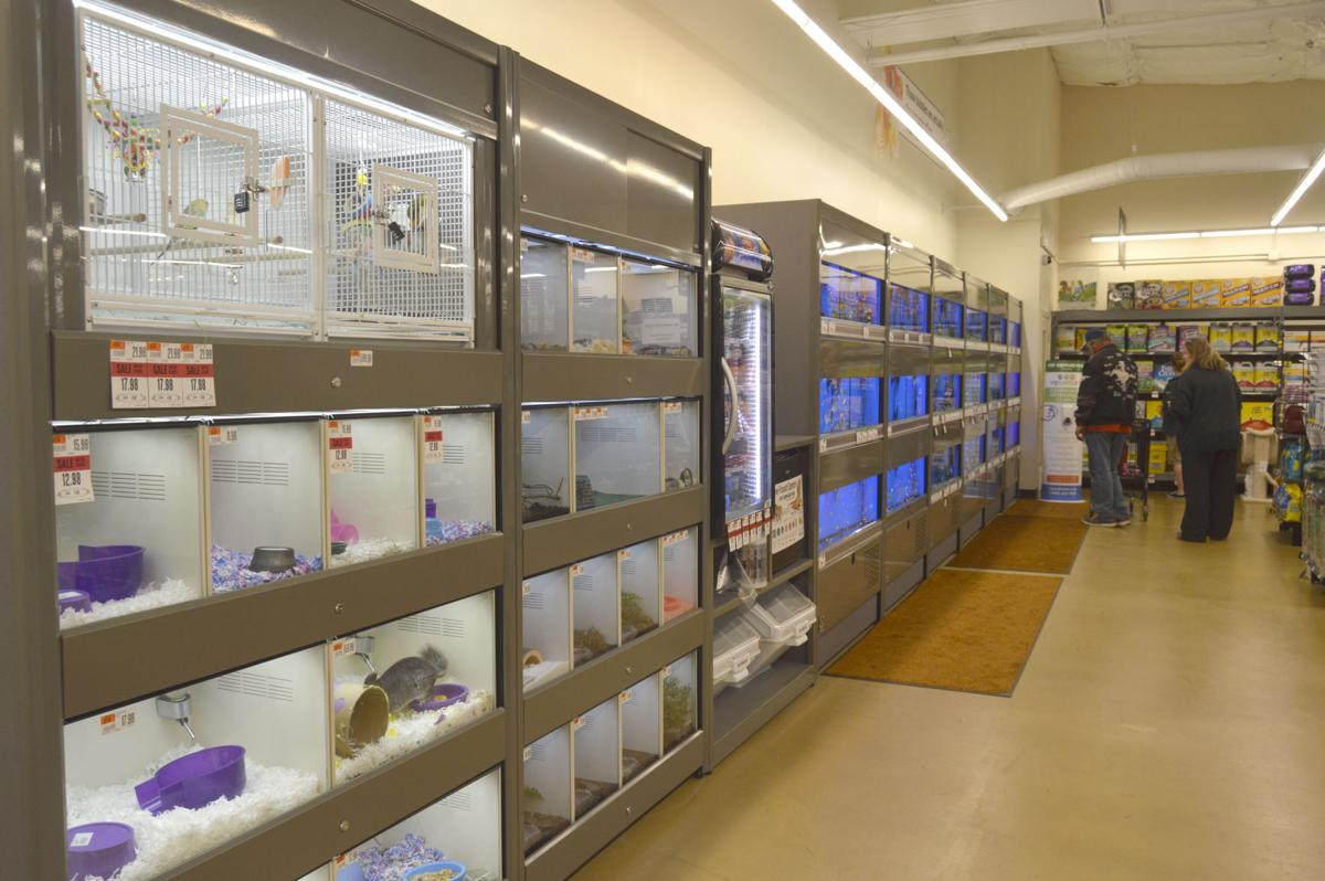 Pet supplies plus celebrates grand opening business - Grand petshop ...
