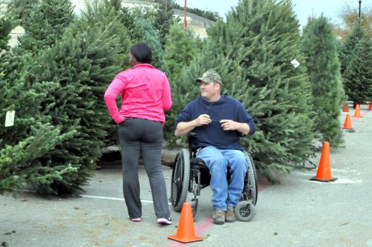 Market Heights Christmas trees