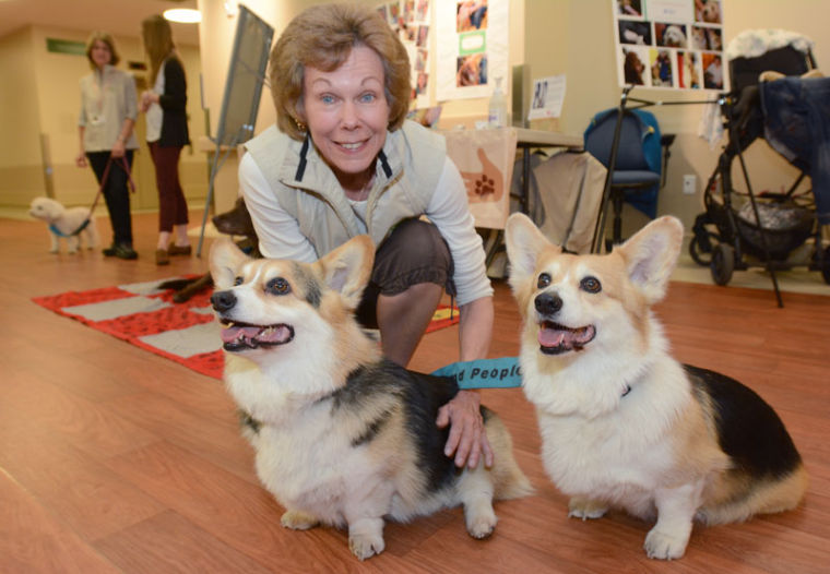 Kelowna Pets to People program a huge success | Life
