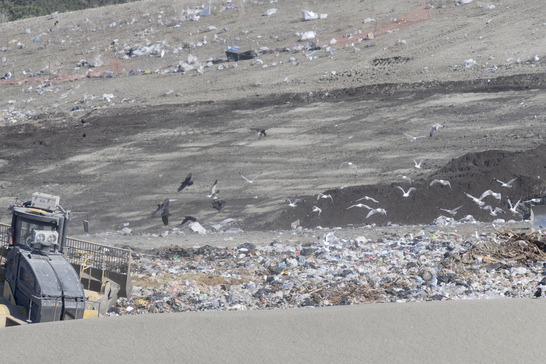 Rising trash piles at Kelowna's dump more noticeable than ever