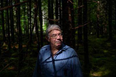 For some N.S. woodlot owners, end of controversial pulp mill not seen as disaster