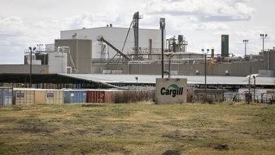 Union boss wants meat-plant workers on early COVID-19 vaccine list