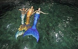 Halifax mermaid company making a splash across Maritime provinces